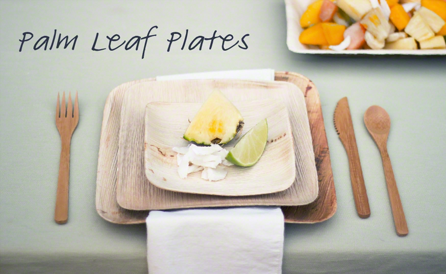 Palm Leaf Tableware & Disposable Palm Leaf Plates u0026 Bowls | Good Start Packaging