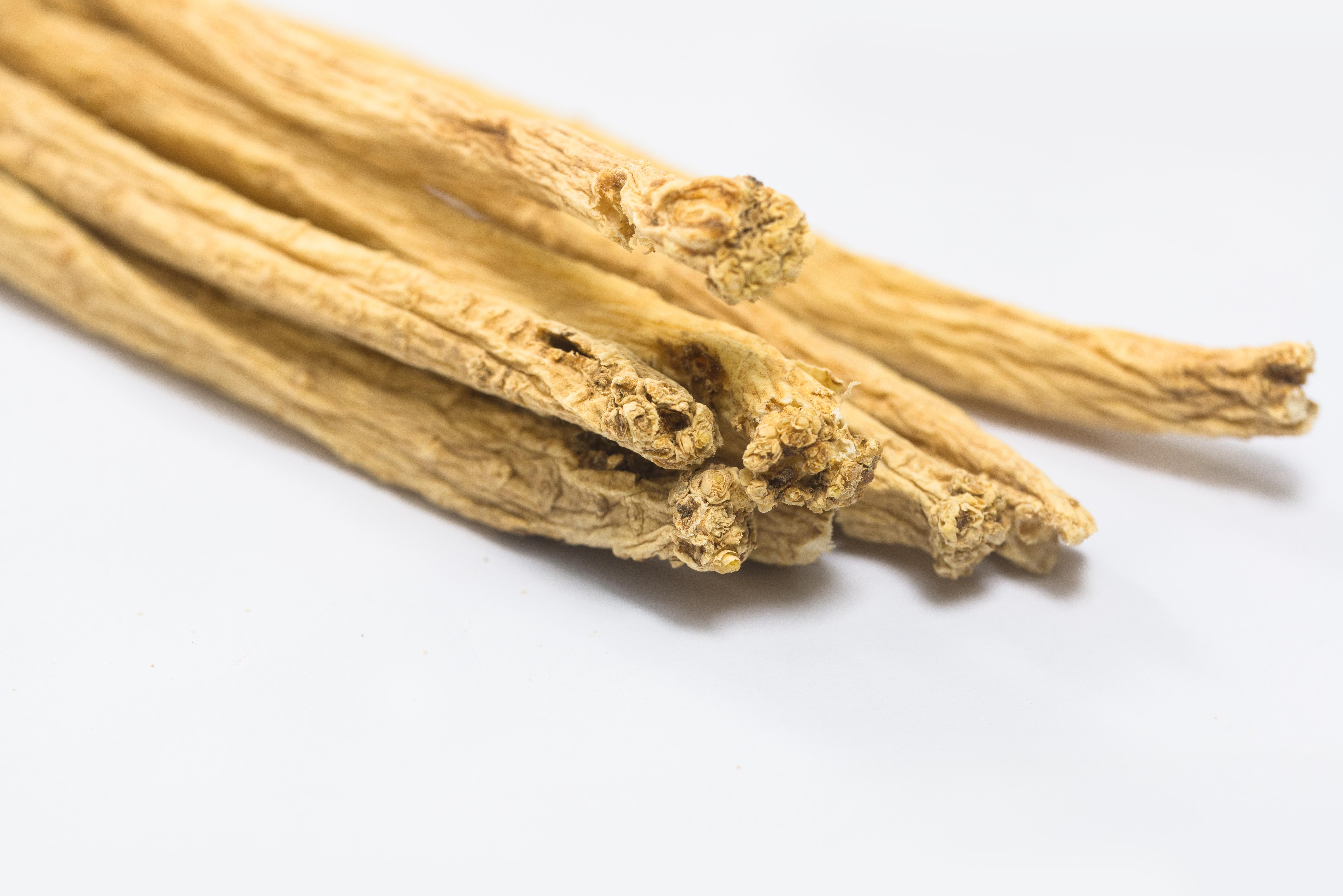 Dang Shen Herbal Medicine