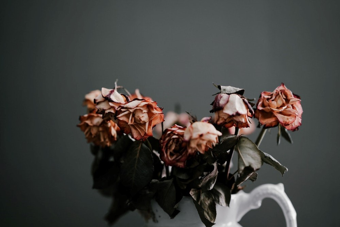 Amazing Ways to Decorate the Home with Dried Flowers and