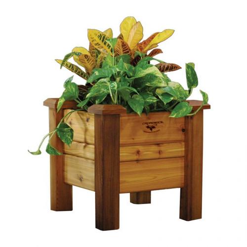 Planter Box 18x18x19