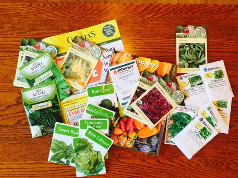 My Seed Catalogs Are Arriving!