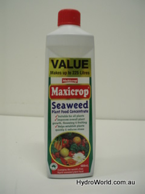 Maxicrop Seaweed Plant Food 600ml