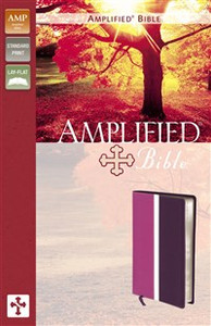 Amplified Bible, Imitation Leather, Pink/Purple - ISBN: 9780310439165