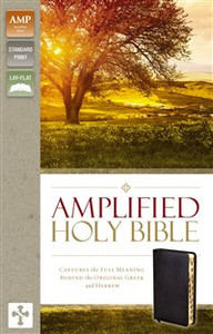 Amplified Holy Bible, Bonded Leather, Black, Indexed - ISBN: 9780310443933