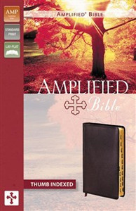 Amplified Bible, Bonded Leather, Burgundy, Indexed - ISBN: 9780310951810