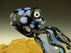 Dichroic Art Glass Octopus Pendant lampwork focal bead Boro oddity by Eli Mazet VGW (ready to ship)