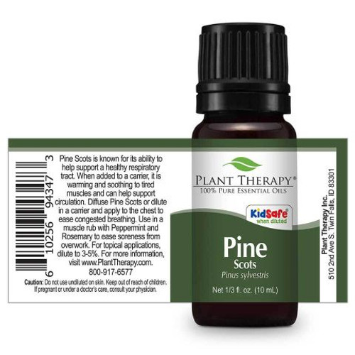 Pine Scots Essential Oil 10ml by Plant Therapy