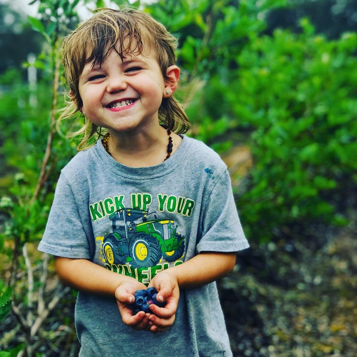 Florida Blueberry Picking