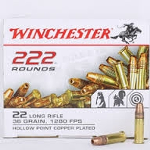 Winchester 22LR Ammunition 36 Grain Copper Plated Hollow Point CASE 2,220 rounds