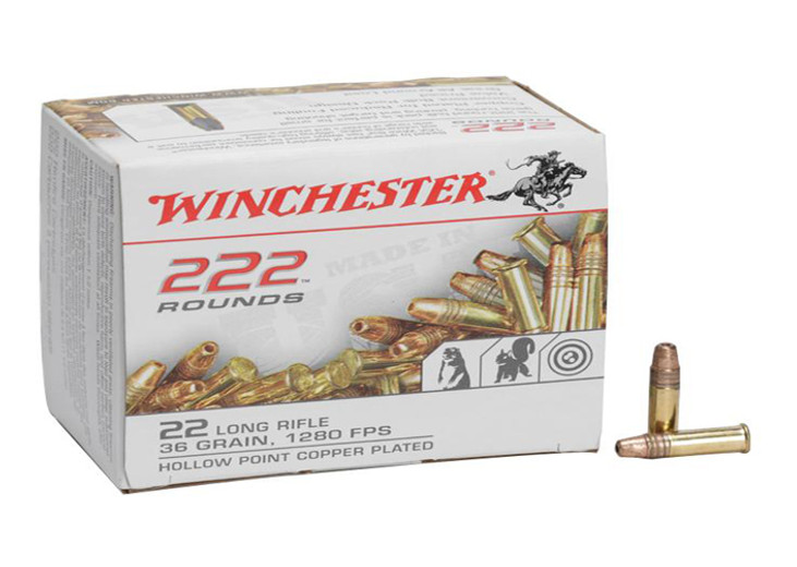 What Are The Most Powerful 22lr Ammunition.