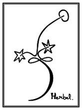 Les Vignes Herbel, Le Rouge (2006) · 1.5 L