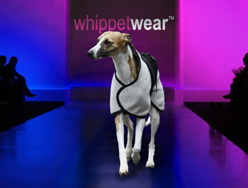 Whippet Coat - Pony