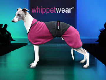 Pony Coat for Whippets