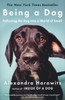 Being a Dog: Following the Dog Into a World of Smell - Paperback