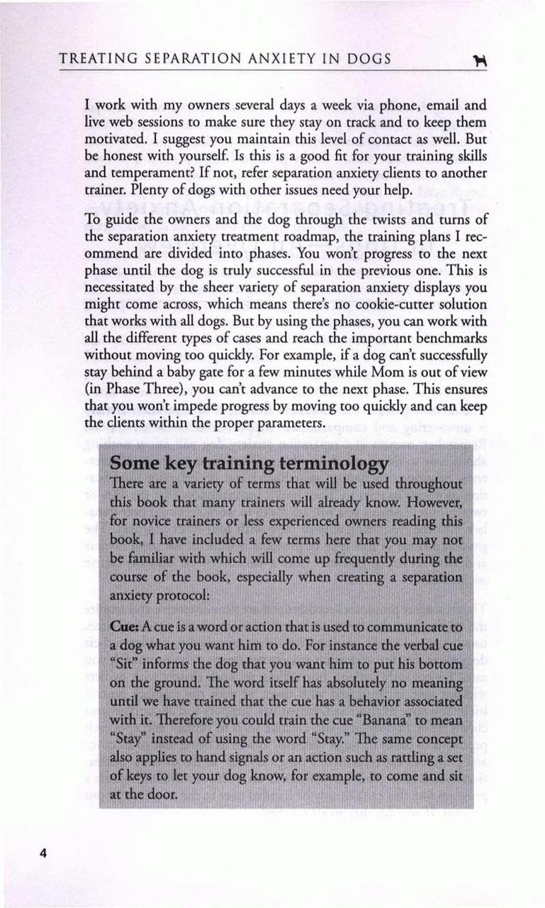Workbooks best anxiety workbook : Treating Separation Anxiety In Dogs - Dogwise