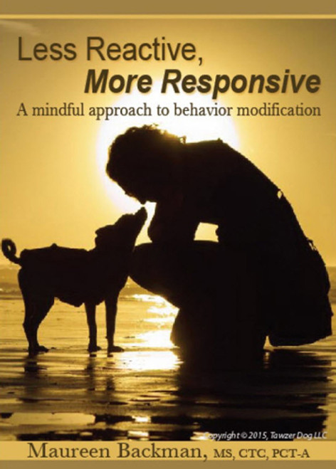 Less Reactive, More Responsive: A Mindful Approach To Behavior Modification Dvd