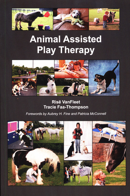 Animal Assisted Play Therapy (Shopworn)