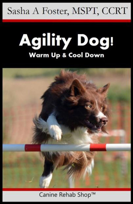 Agility Dog! Warm Up & Cool Down PDF