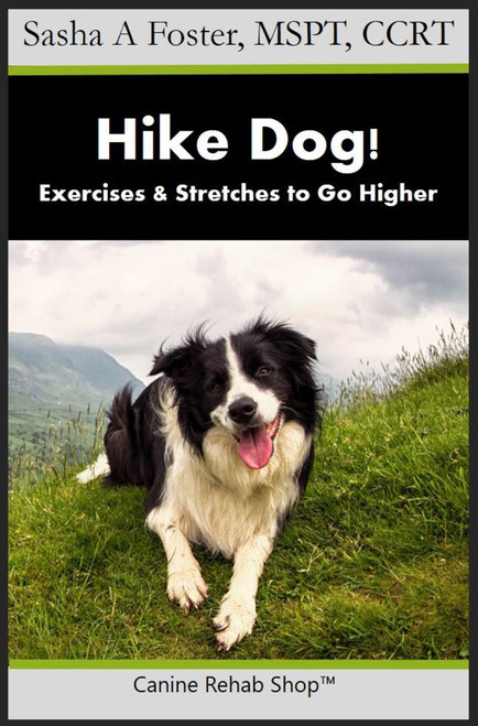 Hike Dog! Exercises & Stretches to Go Higher PDF