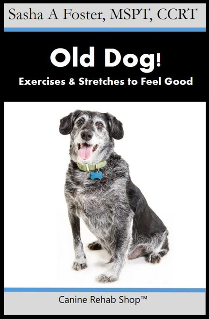 Old Dog! Exercises & Stretches to Feel Good PDF