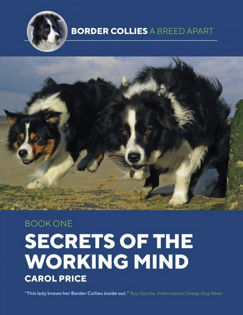 Border Collies A Breed Apart: Secrets of the Working Mind