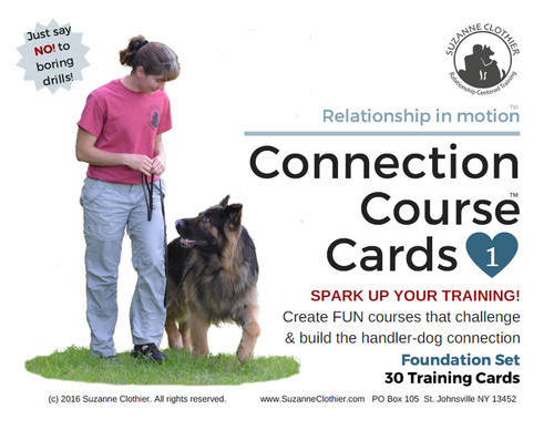 Domestic dog its evolution behavior and interactions with people ebook connection course cards foundation set pdf fandeluxe Choice Image