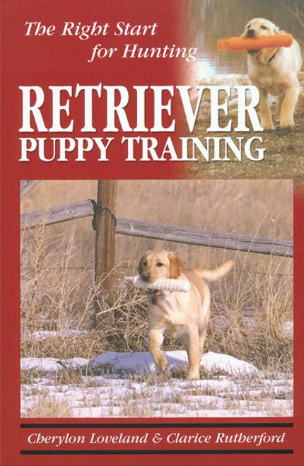 Ebook retriever puppy training the right start for hunting 2nd ebook retriever puppy training the right start for hunting 2nd edition fandeluxe Image collections