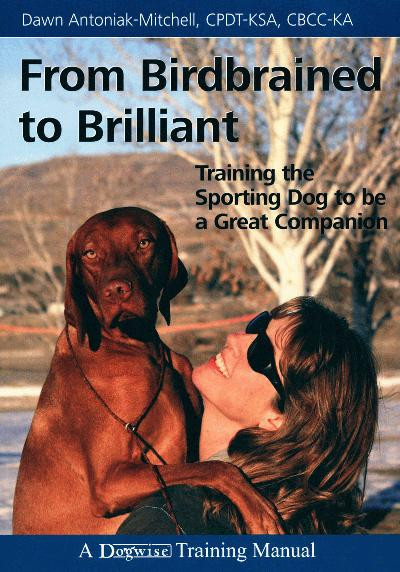 From birdbrained to brilliant training the sporting dog to be a ebook from birdbrained to brilliant training the sporting dog to be a great companion fandeluxe Image collections