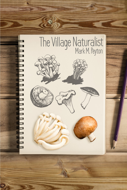 The Village Naturalist