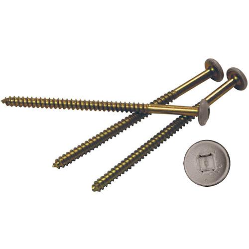 3 Inch Painted Steel Screws (12 per Bag)