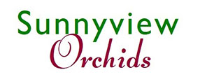 Sunnyview Orchids