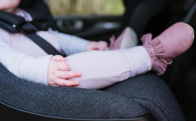 Clek Mammoth Collection: Naturally Flame-Retardant Car Seats
