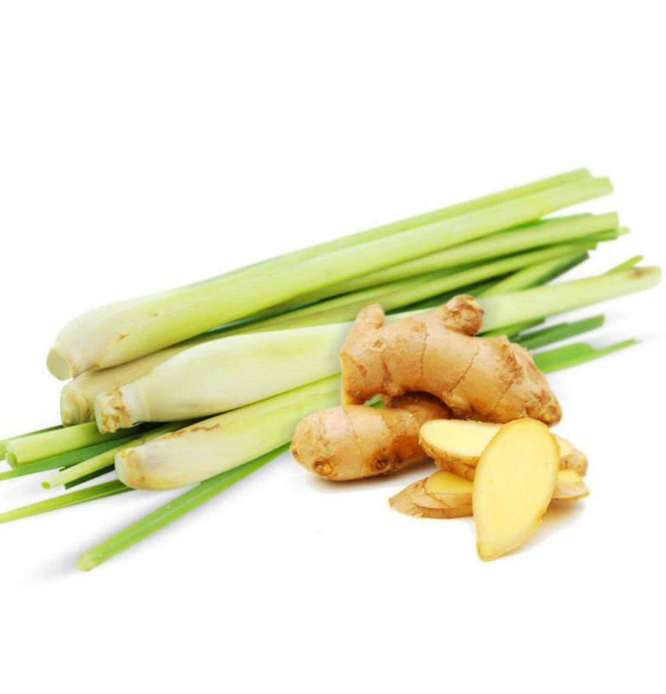Vegan Body Milk – Green Tea, Ginger & Lemongrass 2oz