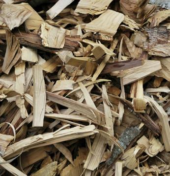 Vegan Body Milk – Bay Rum, Vanilla & Cedarwood 8oz