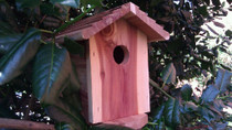 Birdhouse Hidden Camera w/ 4G Cellular Remote Viewing