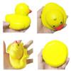 Yellow Duckie Squishy | Ducks in the Window