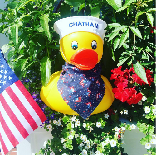 HAPPY 4th of July from Ducks in the Window!!!