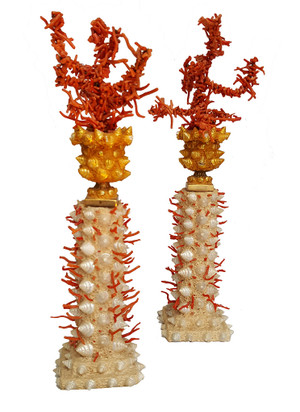 Coral Art by Andrew Fisher