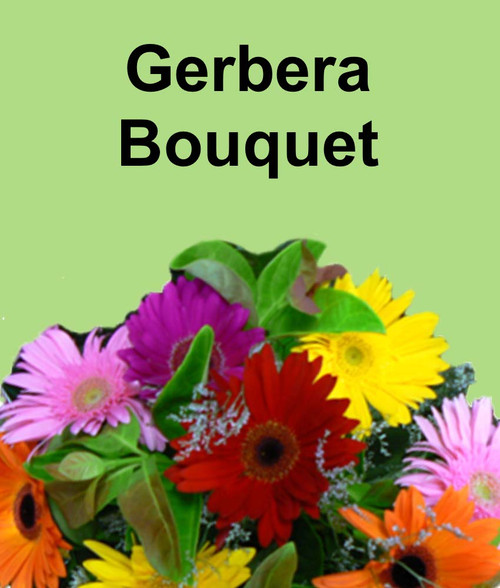 Gerbera Bouquet $35 - $100