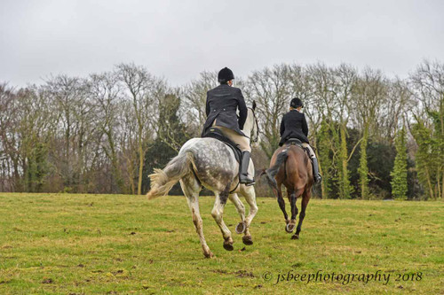 Diary of a Hunting Newcomer (Part 8) - They call me 'One O'Clock Will'