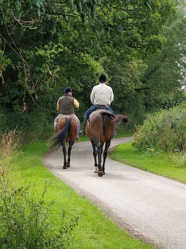 A hunting newcomer's diary (part 2) - Learning to ride.