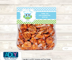 Printable Boy Owl Treat or Goodie bag Toppers for Baby Boy Shower or Birthday DIY Spring, Blossom