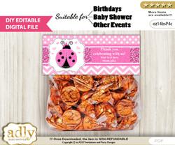 Text Editable Girl Ladybug Goodie  Treat Bag Toppers, DIY Favor Bag Digital File, print at home