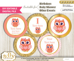 DIY Text Editable Girl Owl Cupcake Toppers Digital File, print at home, suitable for birthday, baby shower, baptism nn