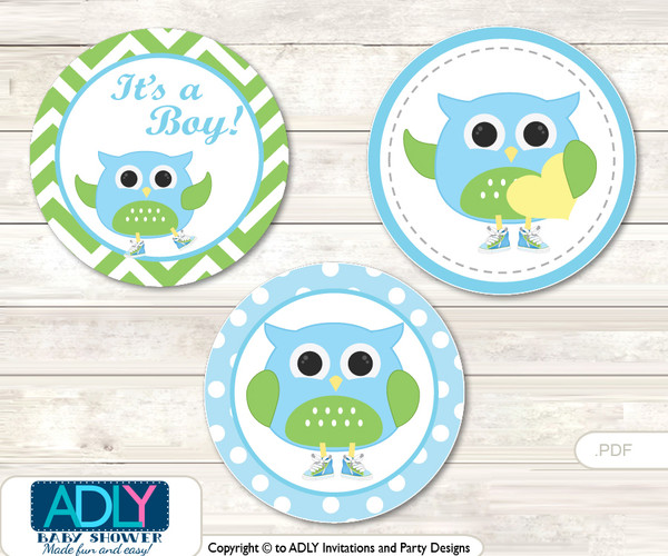 Printable  Boy Owl Candy Kisses for Baby Boy Shower DIY Spring , Blossom