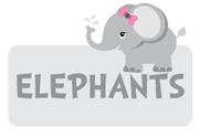 girl-elephant-theme3.jpg
