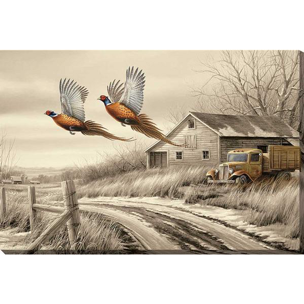 Pheasant Wrapped Canvas Wall Art | Weathered Memories | Wild Wings | F593853419  sc 1 st  Wildlife Wonders & Pheasant Wrapped Canvas Art | Weathered Memories | Wild Wings