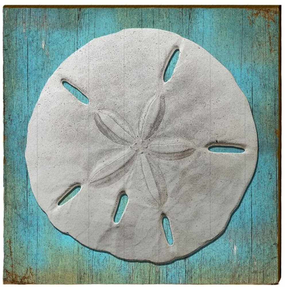 sand dollar wood art 30x30 mill wood art