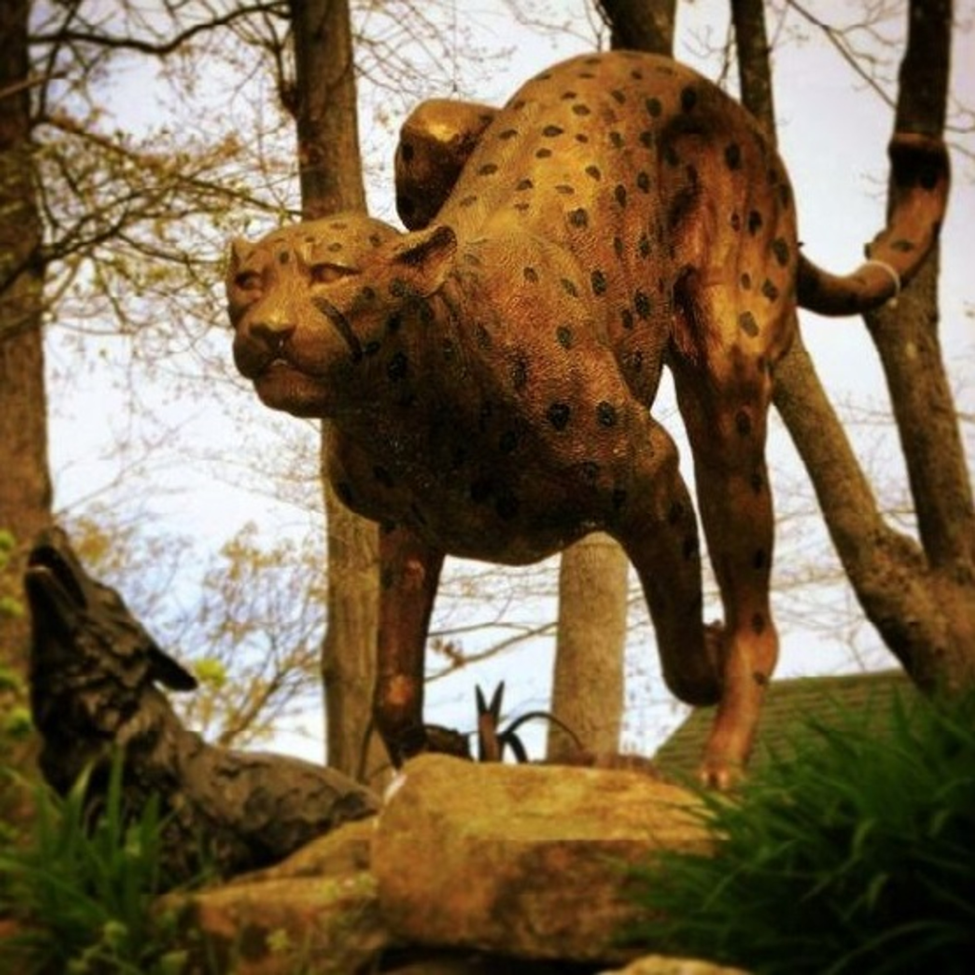 Cheetah Running Sculpture Outdoor Bronze