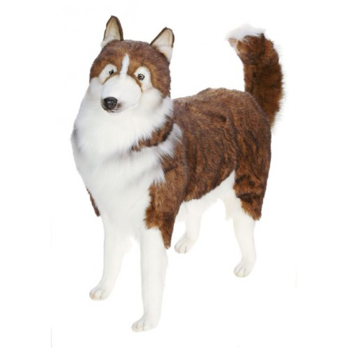 husky dog life sized stuffed animal dog plush statue hansa toys. Black Bedroom Furniture Sets. Home Design Ideas